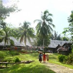 Striving to save the remaining forests in West Borneo